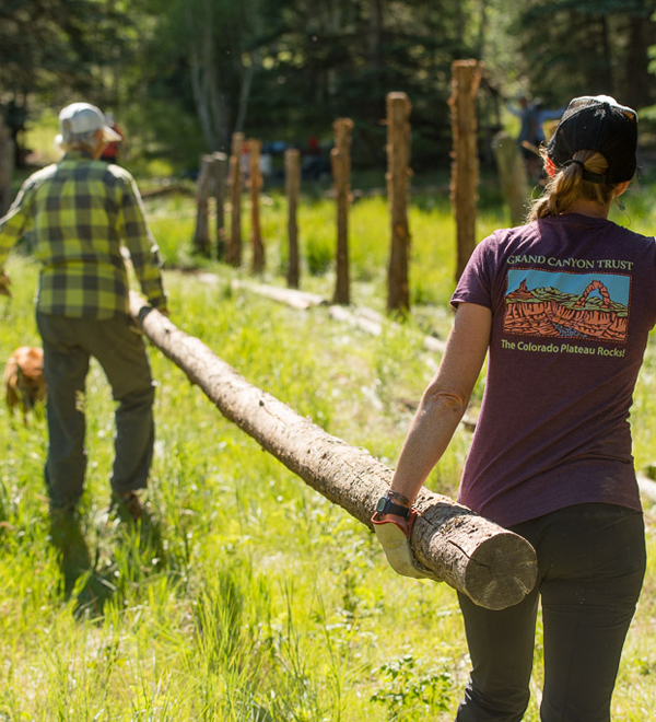 Careers - Volunteer Program Associate Block