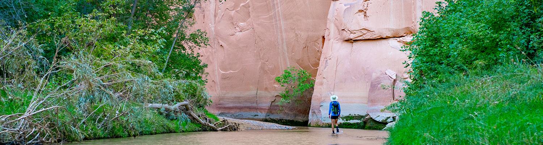 GSENM - hiker header