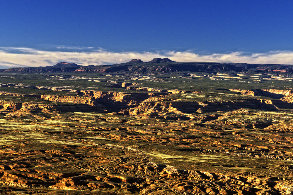 Cedar Mesa and Bears Ears. Photo by Tim Peterson