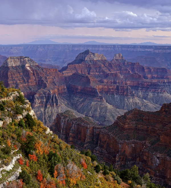 Advocate Spring/Summer 2019 - Grand Canyon Endowment