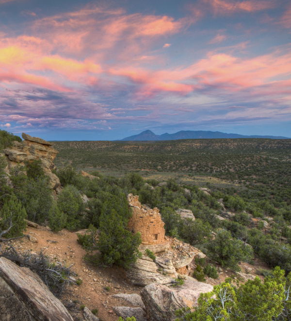 Blog - Trumped (Canyons of the Ancients National Monument)
