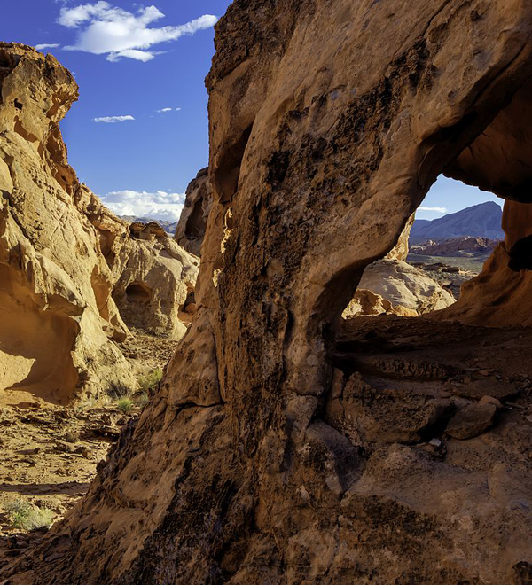 Blog - Trumped (Gold Butte National Monument)