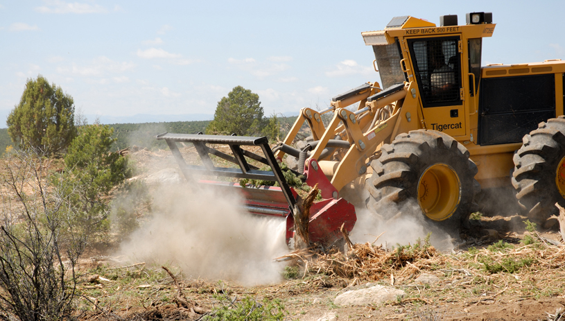 "A ""bullhog"" grinds pinyon-juniper trees into mulch at the West Coal Creek area northeast of Price. UDWR"