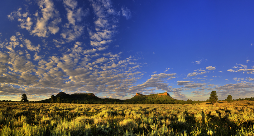 Bears Ears Buttes at Sunrise by Tim Peterson