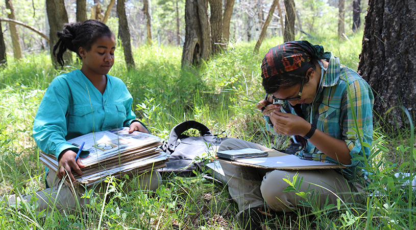 Utah Forests Program Interns, photo by Marra Clay