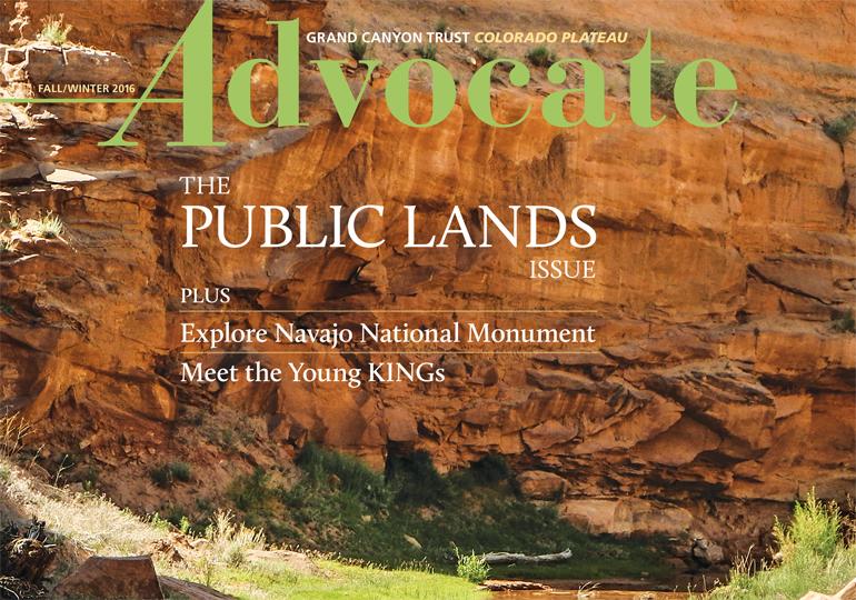 Read the Advocate Magazine