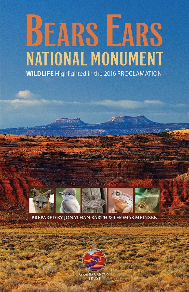 Bears Ears Wildlife Guide