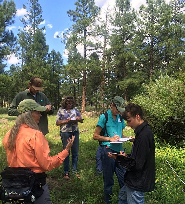 4FRI - volunteers in action